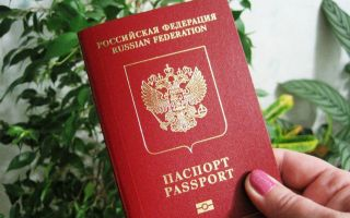 Проверка готовности загранпаспорта гражданина РФ