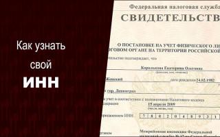 Как найти свой ИНН по паспортным данным онлайн?